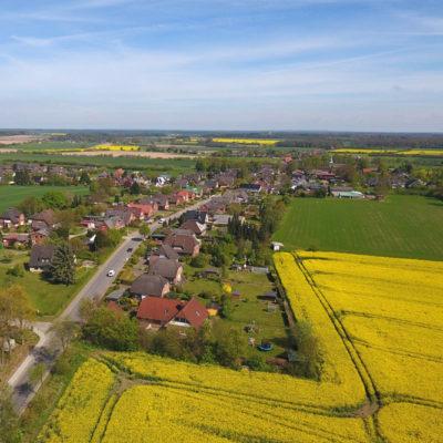 Luftbilder-Mobil_Drohne_Geesthacht_Rapsfeld-02